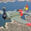 WWII Warbirds-1