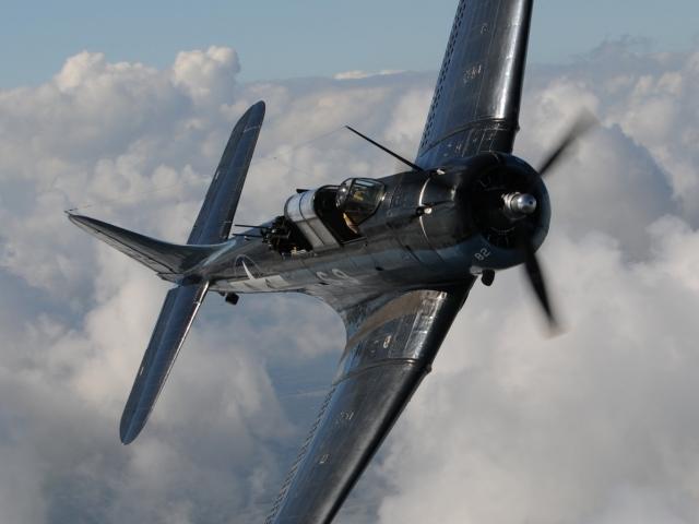 WWII Warbirds-2