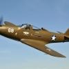 WWII Warbirds-4