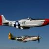 WWII Warbirds-10